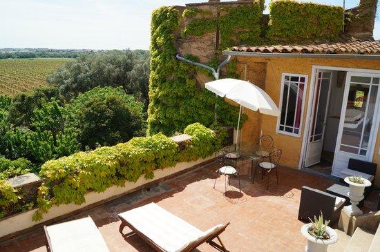 Charming Chateau: Château Hermitage terrasse de l'appartement Mirepoix