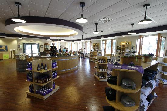 Chautauqua County, NY: Grape Discovery Center, Westfield