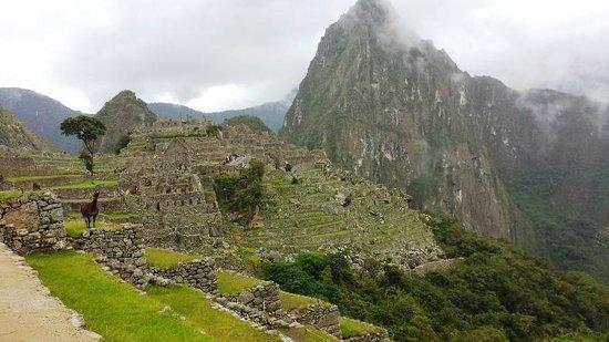 Machu Picchu Viajes Peru : Machu Picchu 2