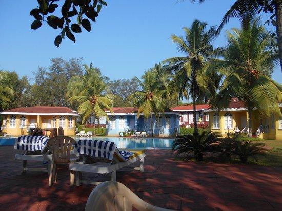 Varca Palms Beach Resort : Pool