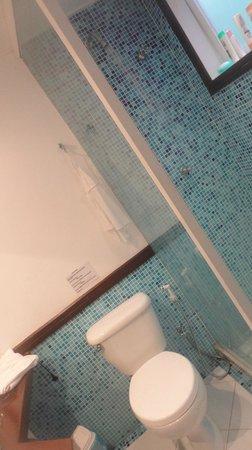Pousada Vila Pitanga: Banheiro