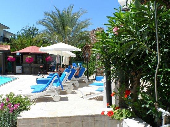 Mooie tuin uit zicht op zwem bad picture of c & a tourist
