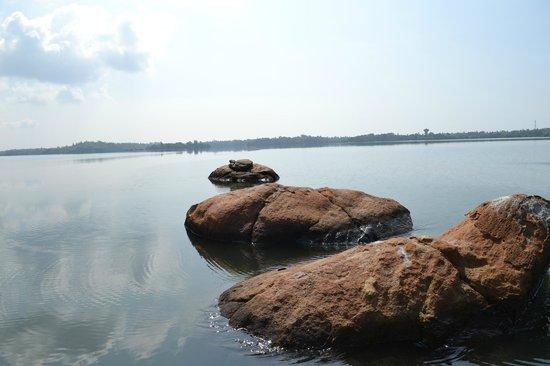 Lagoon Herbal Garden: Озеро