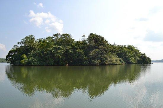 Lagoon Herbal Garden: Вдоль острова