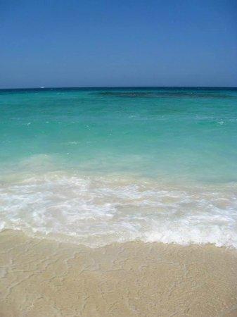 Cartagena Divers: plage de catagene