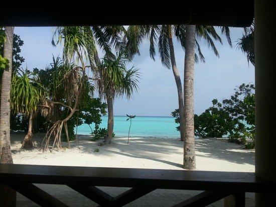 Sun Island Resort: Vu de notre table au restaurant
