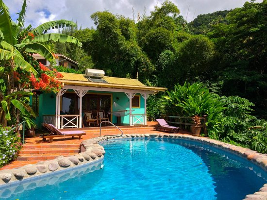 Stonefield Estate Resort: Frangipani suite and pool