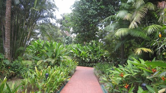 Barcelo San Jose Palacio: Hotel Gardens