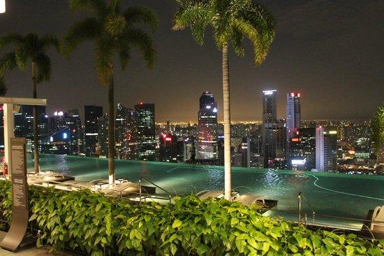 Marina Bay Sands: Бассейн