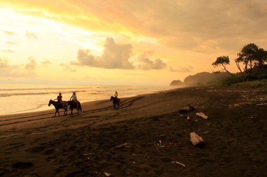 Hermosa Bungalows: Horsebackriding on the beach in front of the Bungalows