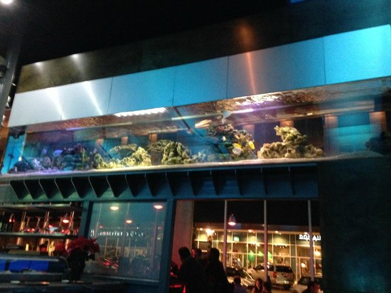Fort worth aquarium