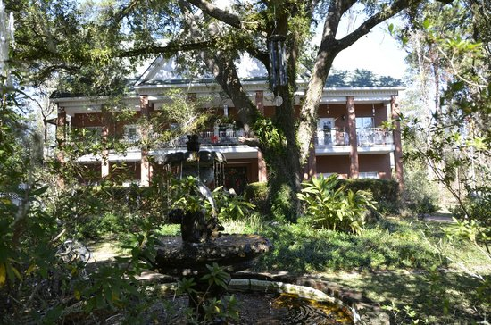 Woodridge Bed and Breakfast of Louisiana : Live Oak out front
