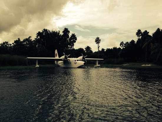 Loews Royal Pacific Resort at Universal Orlando: The water plane- what else