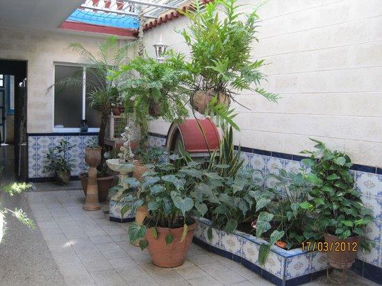 Casa Jesus & Maria: patio