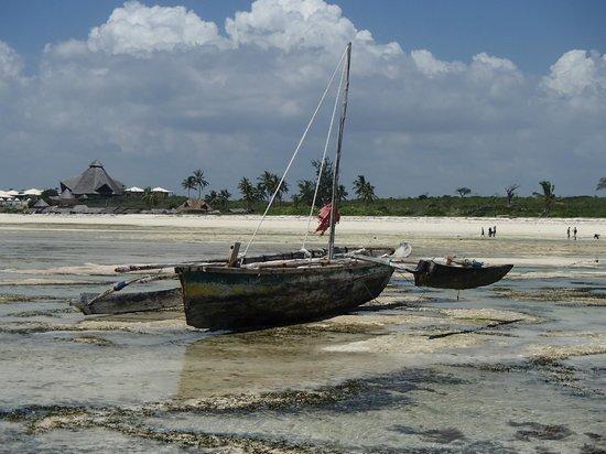 Jumbo Watamu : Bassa marea