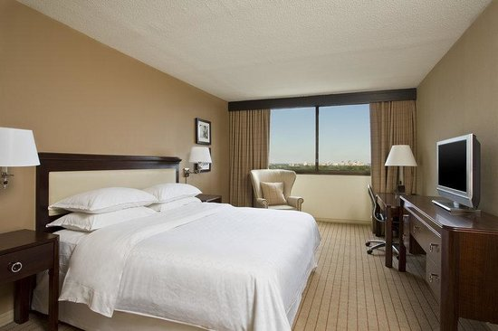 Sheraton Clayton Plaza Hotel St. Louis: King Sweet Sleeper Bed