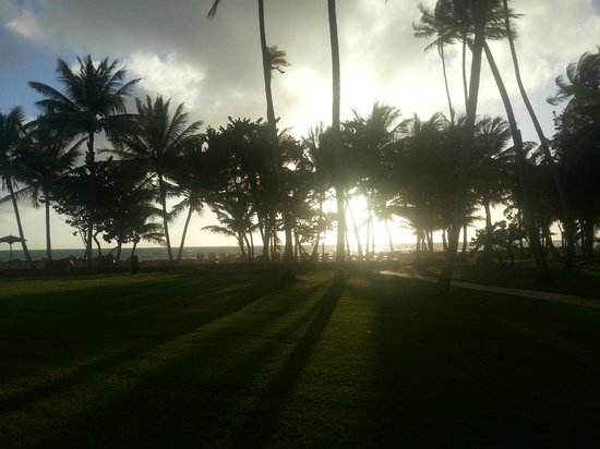 Magdalena Grand Beach & Golf Resort: Sunrise from our patio