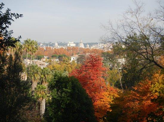 Orto Botanico di Roma: Сад
