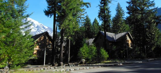 National Park Inn at Mount Rainier: Back of National Park Inn