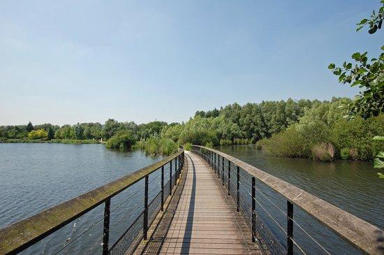Parc de Loisirs Jacques Vernier: Pont