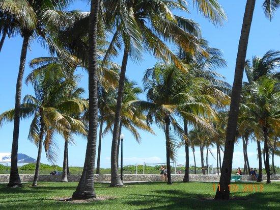 Beacon Hotel: plage