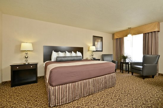 Best Western Coral Hills : Deluxe King Room - Chocolate Decor