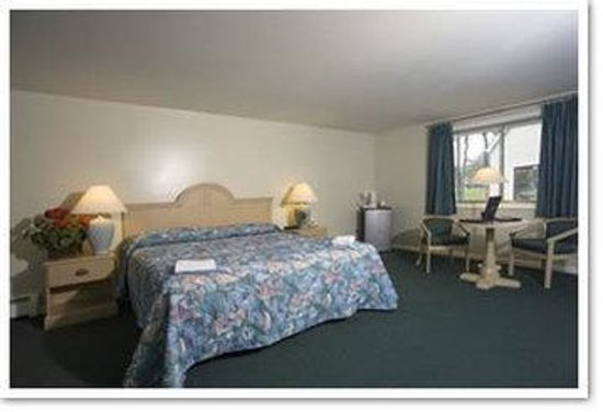 Southfleet Motor Inn: King