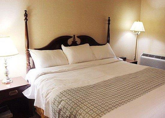 Econo Lodge City Centre: king room