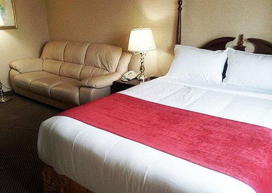 Econo Lodge City Centre: queen room