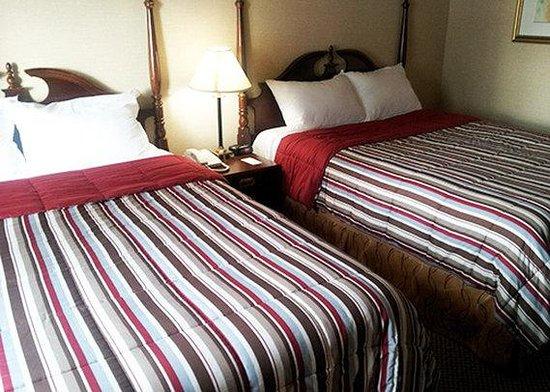 Econo Lodge City Centre: double queen room
