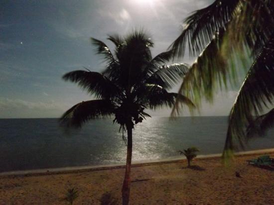 Jungle Jeanie's by the Sea : full moon at Beach Cabana