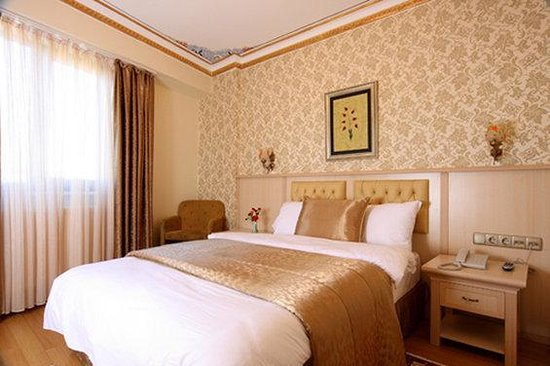 Aldem Hotel : Guest Room A1Q