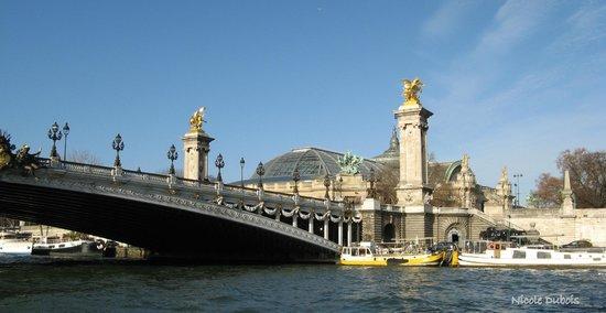 Vedettes du Pont Neuf : Le  pont Alexandre III et le Grand Palais