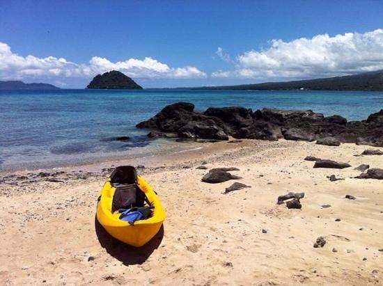 Taveuni Island Resort & Spa: honeymoon island snorkeling