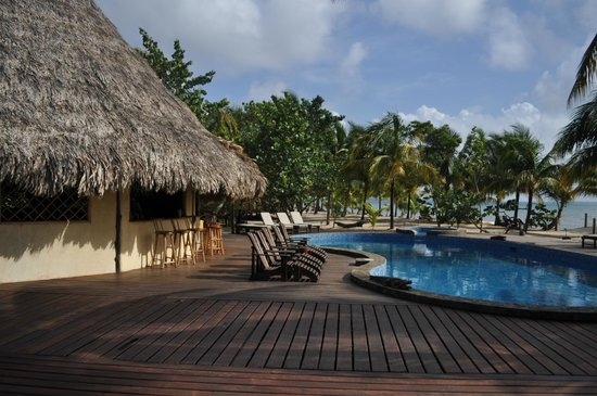 Kanantik Reef & Jungle Resort: Pool and bar