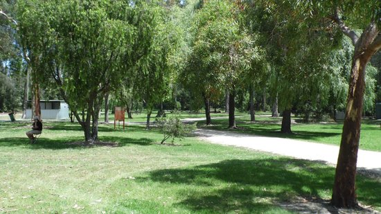 Cann River, Australia: great little park for a nights rest