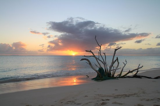 Loblolly Beach Cottages: Tramonto anegada