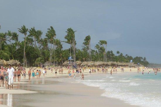 Luxury Bahia Principe Ambar Blue Don Pablo Collection: Beach