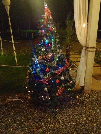 Hotel M&M Beach House: Feliz Navidad