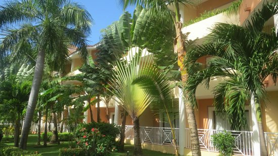 Luxury Bahia Principe Ambar Don Pablo Collection : gardens