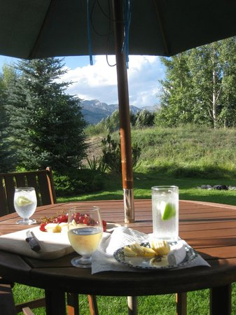Teton View Bed & Breakfast: Patio from Cabin