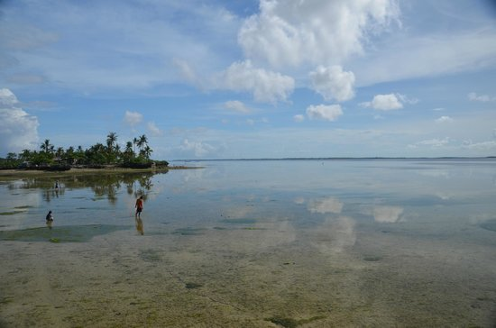 Pacific Cebu Resort: 桟橋の周囲は潮の干満で表情が変わる。