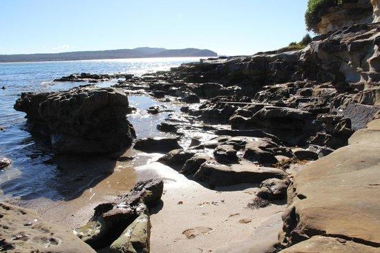 NRMA Murramarang Beachfront Holiday Resort : the beach