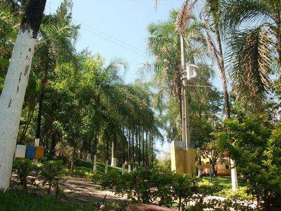 Hotel Fazenda Vale Do Sol : Muito verde!!!!