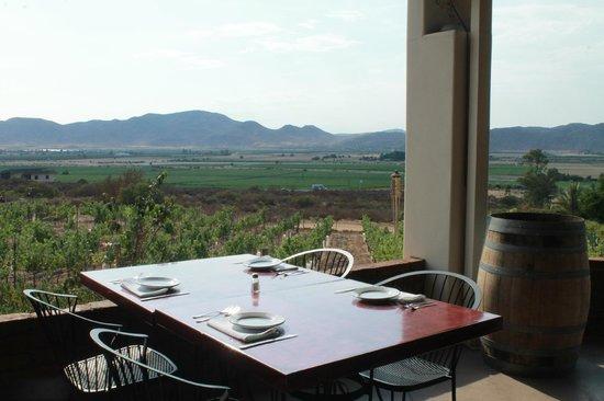 Hacienda Guadalupe Restaurante: Vista desde nuestra terraza