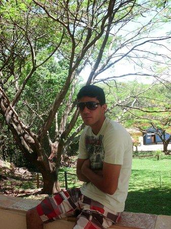 Hotel Fazenda Vale Do Sol : na área florestal.