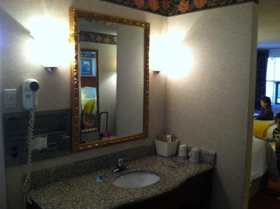 River Edge Motor Lodge : Really loved the separate vanity!