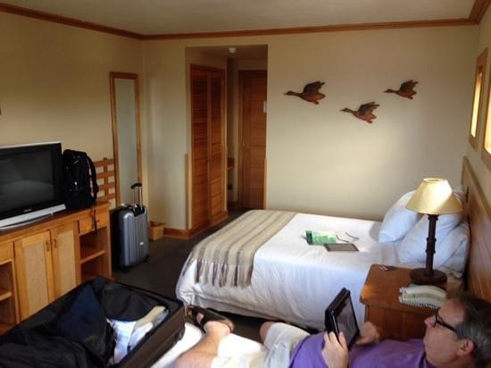 Hotel Puelche : fine room