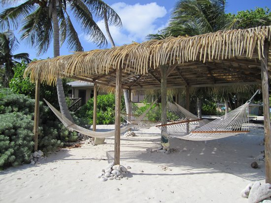 Pirates Point Resort : The hammocks offer a place to relax and read.
