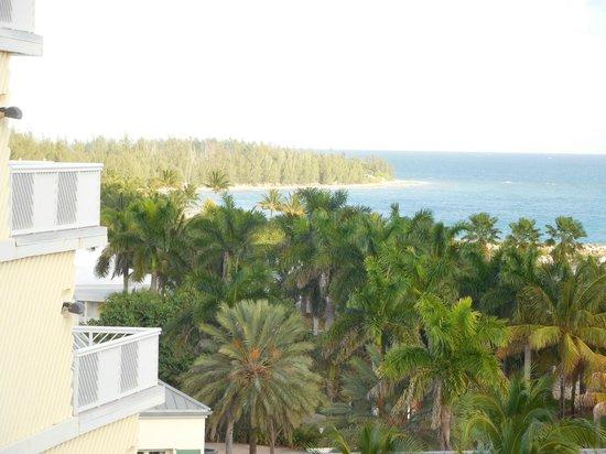 Grand Lucayan, Bahamas: Vue de la chambre